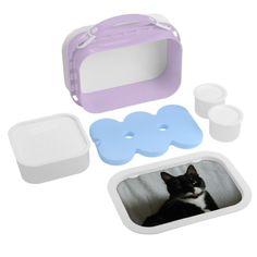 Brat Cat Lunch Box Yubo Lunch Boxes