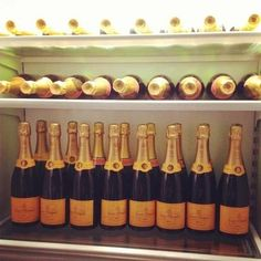 This is definitely my kind of fridge! My favorite champagne is all I need :)