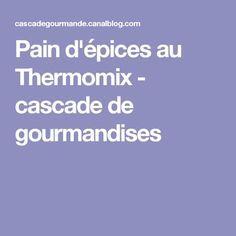 Pain d'épices au Thermomix - cascade de gourmandises