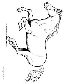 horse coloring pages free printable   Horse coloring sheet 039