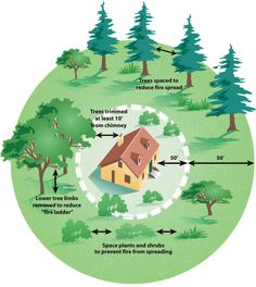 defensible space cal fire