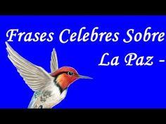 Por el dia internacional de la Paz