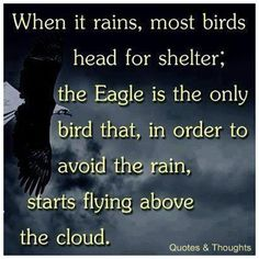 RISE ABOVE IT ALL   (When it rains, most bird head for shelter; the eagle is the only bird that, in order to avoid the rain, starts flying above the cloud.