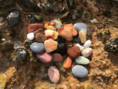 Colorful Genuine Sea Pebbles (50pcs) from Greek beaches, Small Multicolor Beach Stones, Small Colorful Sea Pebbles for Crafts, Tiny Pebbles Hag Stones, Aquarium Decorations, Beach Stones, Beach Crafts, Natural Shapes, Island Beach, Different Colors, Beaches, Craft Supplies