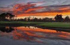 Wigwam Resort - Litchfield Park, AZ