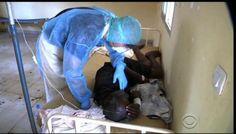3.069 MALADES DONT 1.552 DÉCÈS  : L'Oms s'attend à plus de 20 000 cas d'ébola