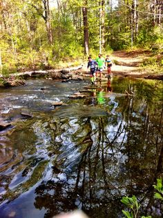 Runners approaching Cedar Creek at Petit Jean State Park during the Hoof it for Heifer 20K Trail Run.