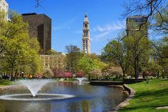 Hartford, CT : Travelers Tower from Bushnell Park in the spring