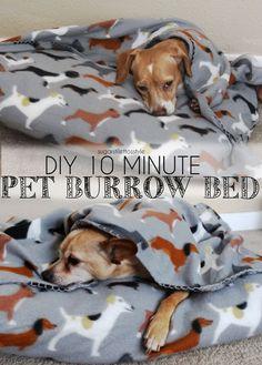 DIY 10 minute Pet Burrow Bed | Sugar Stilettos Style