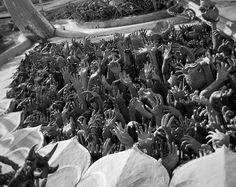 #chiangrai #whitetemple #watrongkhun