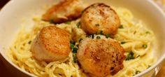 Olive Garden's Fettucine Alfredo Recipe with the BEST pan-seared scallops ever!