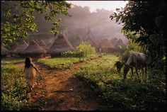 Kogui village of Chivilongui.