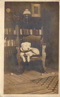 1899 colección C.H.