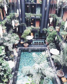 For a tropical paradise in the heart of Copenhagen stay at the hotel Manon Les Suites 🇩🇰 Exterior Design, Interior And Exterior, Love Your Home, At The Hotel, Tropical Paradise, Copenhagen, Hospitality, Corner, Mansions