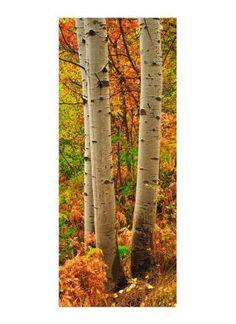 """Stoffdruck """"Herbstlicher Wald"""" 180x75 cm"""