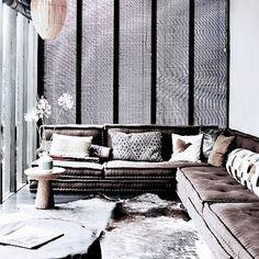 grey velvet couch.  yes please.