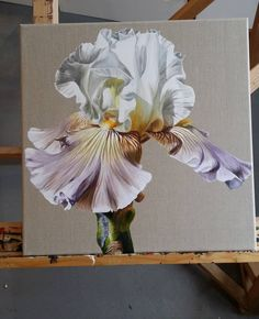 Watercolor Flowers, Watercolor Paintings, Flower Paintings, Iris Painting, Oil Painting Techniques, Retro Art, Painting Inspiration, Flower Art, Art Photography