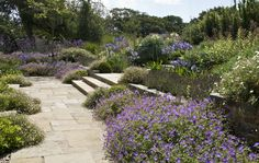 A large family garden consisting of a sequence of sheltered spaces on varying levels to compliment the lines and proportions of a newly refurbished and extended Channel Island farmhouse