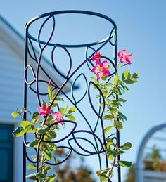 Steel Leaf Obelisk Trellis - Plow & Hearth