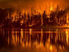 16 September 2014 Fire as it approaches the shore of Bass Lake, California AP