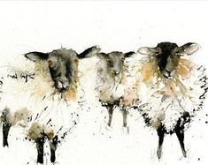 LIMITED edition print of my SHEEP ref; 2388 wall art, home decor, nursery art, wildlife animal art print hand signed LIMITED edition print of my SHEEP ref 2388 wall art home Sheep Paintings, Animal Paintings, Animal Drawings, Watercolor Animals, Watercolor Art, Watercolour Paintings, Black Faced Sheep, Sheep Drawing, Sheep Art