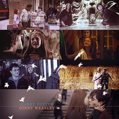Harry & Ginny through the years Harry Potter Ginny Weasley, Harry And Ginny, Harry Potter Facts, Harry Potter Books, Harry Potter Fandom, Hermione, Potter Puppet Pals, Must Be A Weasley, William Kate