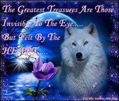 Petra U Luca Shared Native Wolf Photo