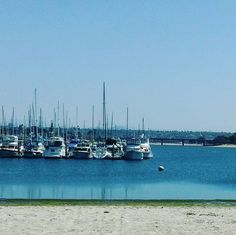 Why must I go to work on a beautiful day like this!? #sandiego #pacificbeach #missionbeach #missionbay #sandiegolife #baristalife #anotherdayinparadise #anotherbeautifulday #springbreak2017 #beautifulday #coastalliving #beachgirl #pacificbeachlocals #sandiegoconnection #sdlocals #sandiegolocals - posted by Samantha Christie  https://www.instagram.com/samantha_cat_lady. See more post on Pacific Beach at http://pacificbeachlocals.com