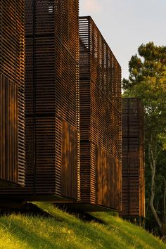 Education centre comprising wooden boxes hovering over a forest floor.