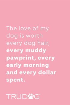 Dog Quotes, Animal Quotes, Puppy Love Quotes, Dogs And Puppies, Doggies, Dachshunds, Thats The Way, Border Collie, Girls Best Friend