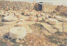 Excavations at the site of ancient Tekoa, hometown of Amos the prophet....    Holman Illustrated Bible Dictionary. 2003 (C. Brand, C. Draper, A. England, S. Bond, E. R. Clendenen, T. C. Butler & B. Latta, Ed.). Nashville, TN: Holman Bible Publishers.