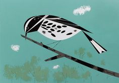 definitely the highlight of this week... I saw a black and white warbler in my magnolia tree today!  here's Charley Harper's version from 1955.  one of my favorites.