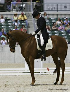 Corinne Ashton and Dobbin in a nice square halt at X at Rolex. Champagne colored FITS.