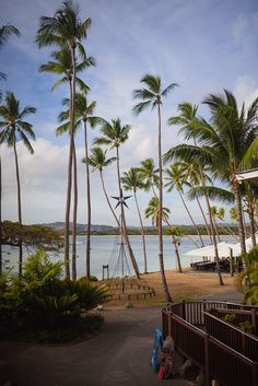 Haley and Chris' Fiji destination wedding   Shangri-la, Fiji