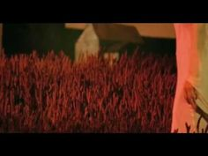 "Enya - ""Wild Child"" (official video) #Enya #WildChild #ADayWithoutRain"