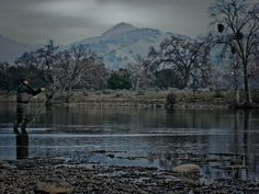 spey casting - Google Search