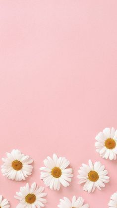 35 Free Cute Pink Wallpapers For Iphone That You Ll Love Flower Wallpaper Aesthetic Iphone Wallpaper Wallpaper Iphone Cute