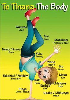 """Maori Resources – Tagged """"Te Reo"""" – Page 2 – Blackboard Jungle School Resources, Learning Resources, Kids Learning, Maori Songs, Waitangi Day, Maori Symbols, Class Displays, Maori Art, Creative Teaching"""