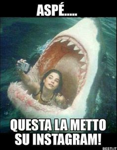 But first, let me take a selfie ! Funny Gags, Crazy Funny Memes, Funny Video Memes, Wtf Funny, Funny Cute, Funny Jokes, Hilarious, Italian Memes, Horror Movie Characters