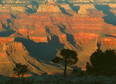 I would like to see the Grand Canyon