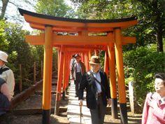 Torii gate at Nezu Shrine, Tokyo, Japan http://www.cheapojapan.com/spring-flowers-at-nezu-shrines-azalea-festival/ #japan #flowers #Azalea #shrine