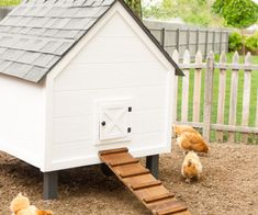 We gave our previously red coop and much needed makeover and turned it into a shiny new white chicken coop. with some upgrades! Chicken Shed, Easy Chicken Coop, Backyard Chicken Coops, Chicken Coop Plans, Diy Father's Day Gifts, Father's Day Diy, Cheap Sheds, Reclaimed Wood Floating Shelves, Raising Backyard Chickens