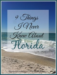 9 Things I Never Knew About Florida. from someone who moved to the sunshine state. Palm Bay Florida, Florida Girl, Visit Florida, Florida Living, Naples Florida, State Of Florida, Florida Vacation, Florida Travel, Florida Home