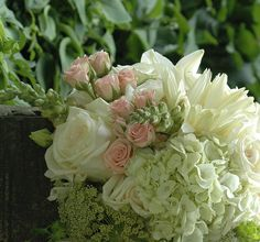 rose, hydrangea, queen annes lace