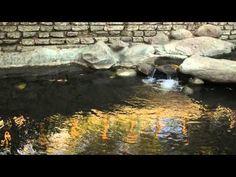 Chapter 19 -- Creek Walk - Downtown San Luis Obispo Walking Tours