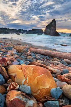 Every shade of red and orange on the southern coast of Oregon, USA