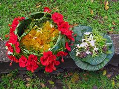 Making fragrant corsages from Polynesian flowers, ginger, and monoi oil. Fatu Hiva Island, French Polynesia.