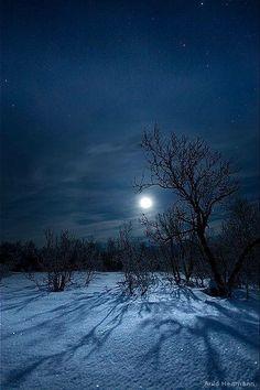 Moonlight on newly fallen snow Winter Szenen, Winter Magic, Winter Night, Winter Moon, Winter Sunset, Moon Shadow, Moon Pictures, Moon Pics, Beautiful Moon