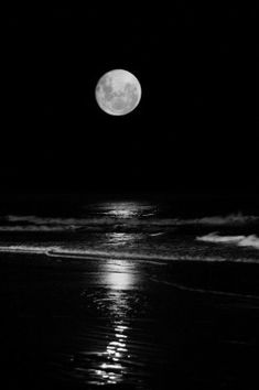 Full Moon / Ocean / Black and White Photography Moon On The Water, Moonlight Photography, Shoot The Moon, Moon Pictures, Full Moon Photos, Beautiful Moon, Beautiful Things, Stars And Moon, Belle Photo