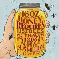 It is found that mixture of Honey and Cinnamon cures most of the diseases. Honey is produced in most countries of the world. Ayurvedic as well as Yunani